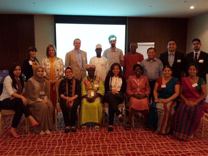 Photos of Forage Crops and Soil-Plant Interaction in Bangkok #18