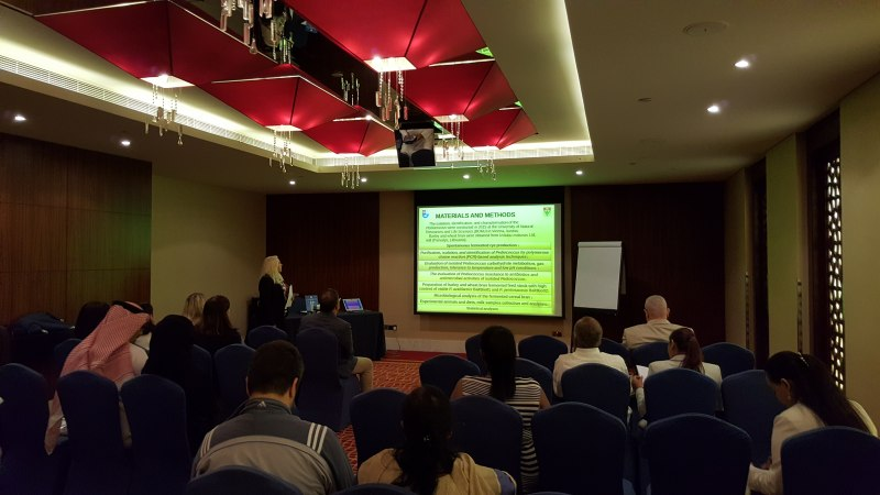 Photos of Biomimetic Material Synthesis and Oxidation Catalysis in Dubai #40