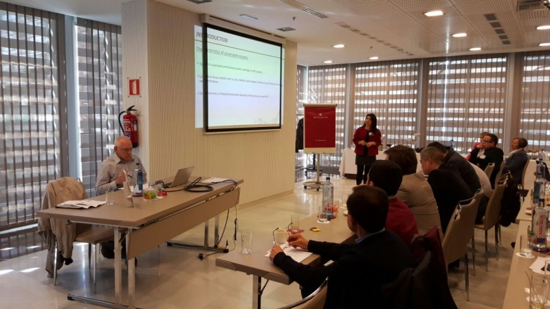 Photos of Green Chemistry and Nanoparticle Synthesis in Madrid #33