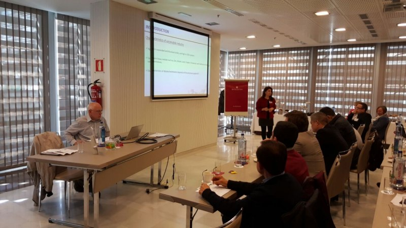 Photos of Green Chemistry and Nanoparticle Synthesis in Madrid #26