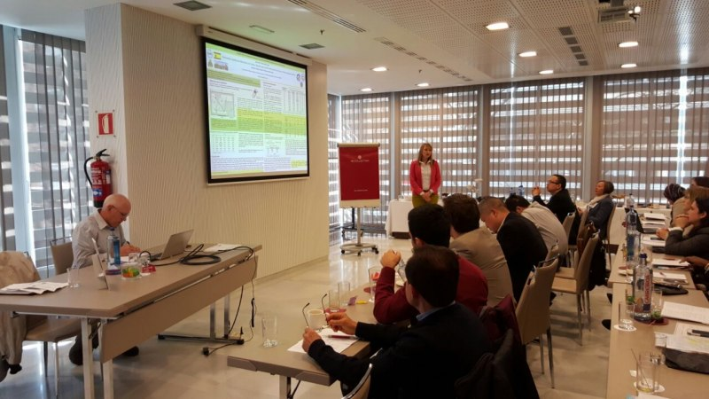 Photos of Green Chemistry and Nanoparticle Synthesis in Madrid #24