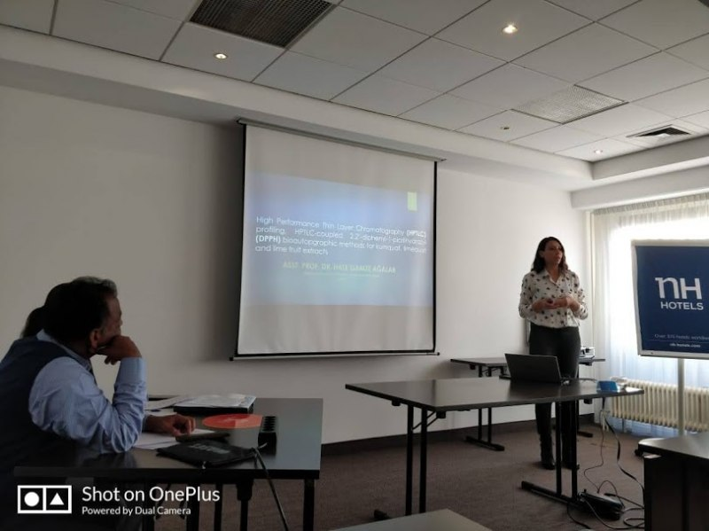 Photos of Feedforward Control and Modeling in Amsterdam #1